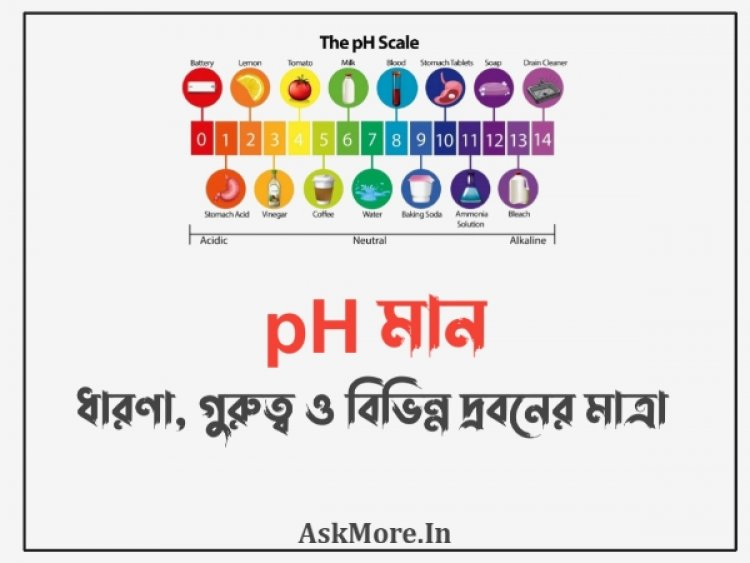 pH মাত্রা – ধারণা, গুরুত্ব ও বিভিন্ন দ্রবনের মাত্রা   pH level - concept, importance and level of different solutions